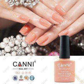 Гель-лак CANNI 062